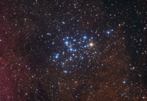 The Butterfly Cluster